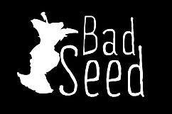 Bad Seed Cider Co.